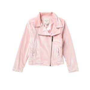 Habitual Kids Velour Moto Jacket (Little Girls)
